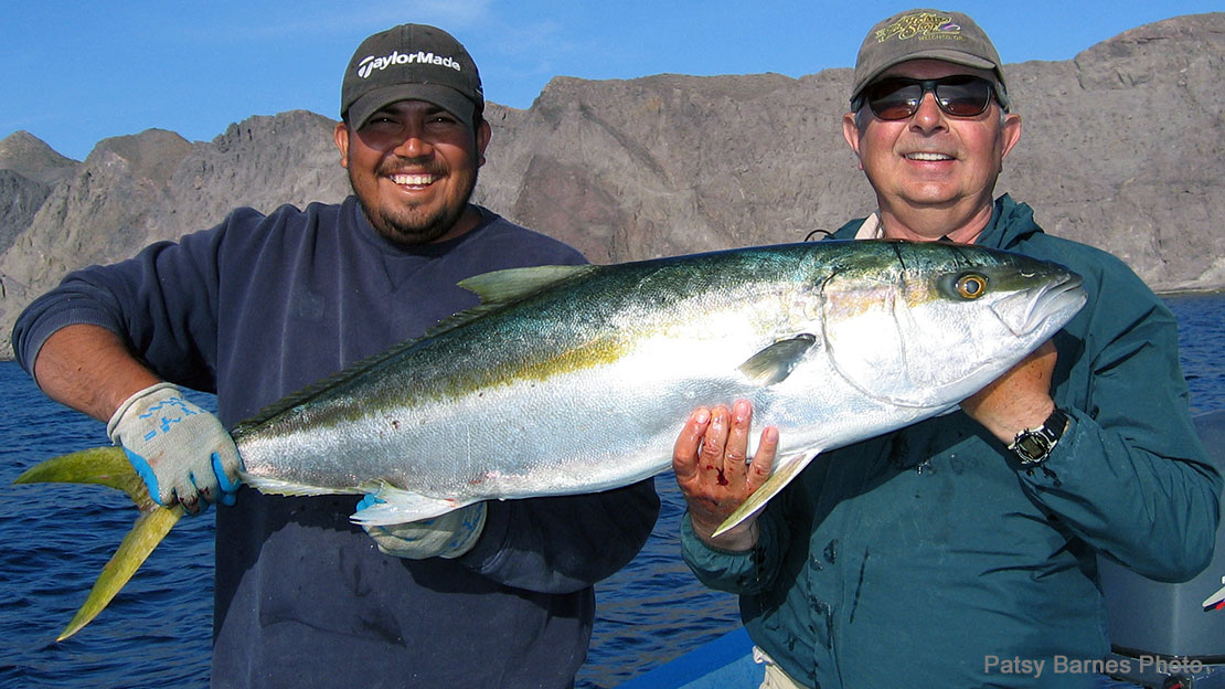 Mark Bachmann landed this world record California Yellowtail, while fishing the Sea of Cortez out of Loreto, Mexicow in April.