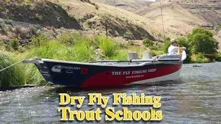 Dry fly fishing for trout can be awesome in the Deschutes River in Oregon Where The Fly Fishing Shop conducts its Dry Fly Fishing Schools.