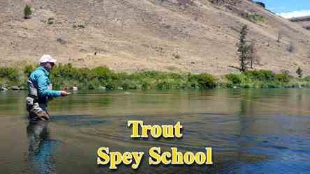 Mark Bachmann is considered one of the worlds experts at teaching methods for fishing trout with Spey rods. He is pictured here on the Deschutes River in Oregon.