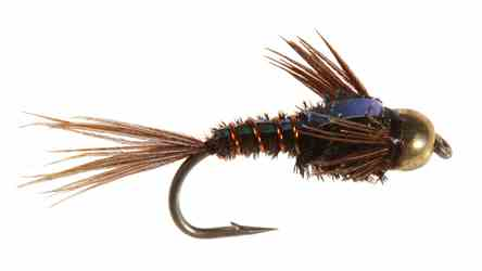 Bead Head Flashback Pheasant Tail Bead Head Flashback Pheasant Tail
