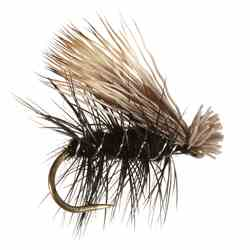 Elk Hair Caddis, Black Elk Hair Caddis, Black