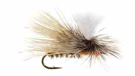Sloans Paralyzer October Caddis Dry Sloans Paralyzer October Caddis Dry