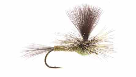 Green Drake Parachute Dy Fly, picture