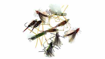 Skwala Stonefly Equalizer Kit, picture