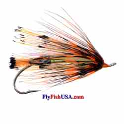 December Day Steelhead Fly December Day Steelhead Fly, summer and winter steelhead fly, best in late fall, use with floating or sinking line