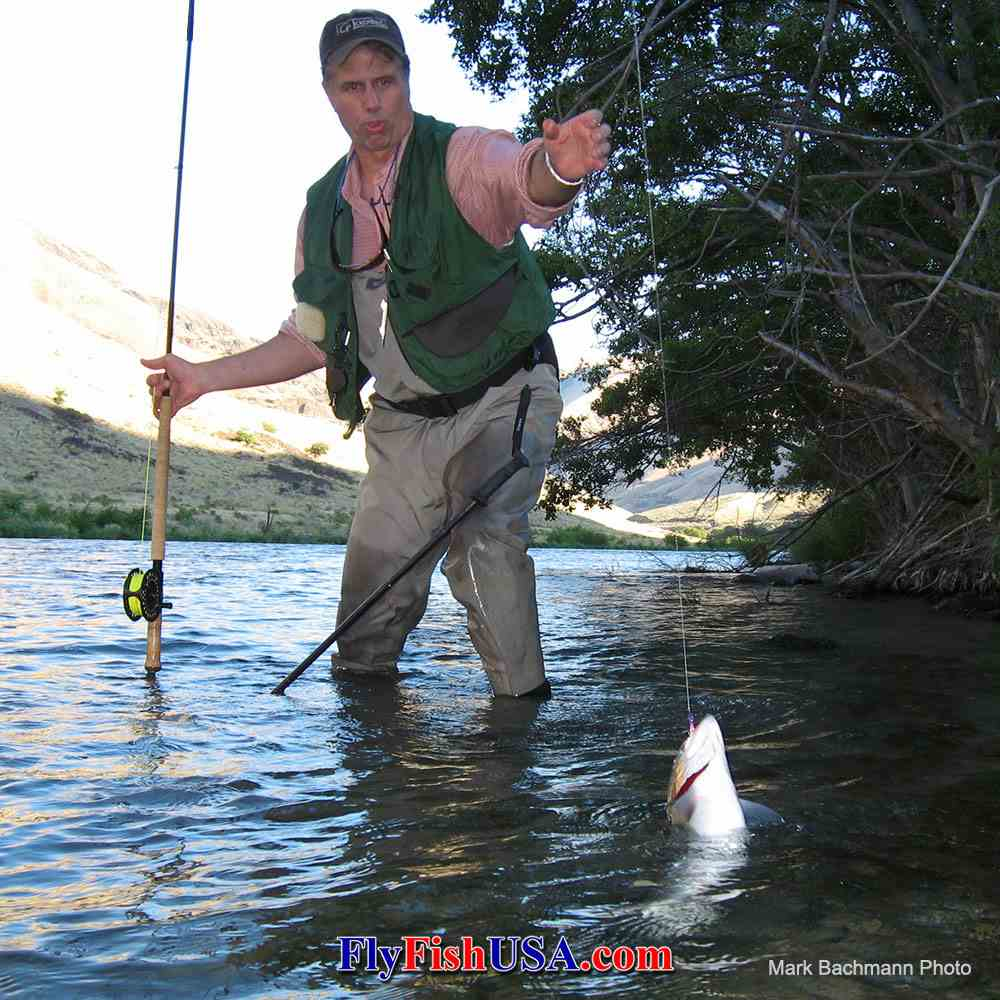Patriot fly at work on the Deschutes River in Oregon, picture