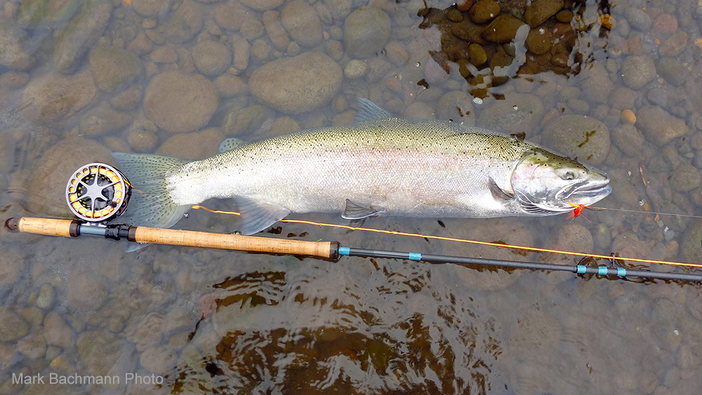 Real Fly Fishers Don't Hibernate During Winter