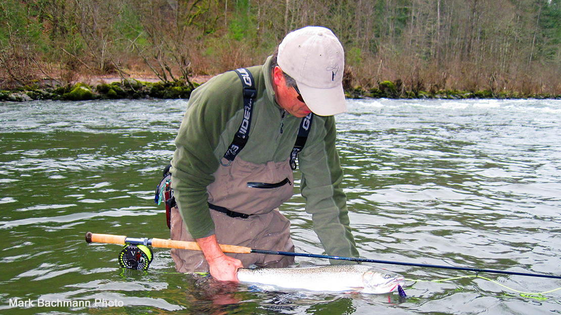 Garry Sandstrom with a Sandy River, Oregon Steelhead caught with an Ambush Line.