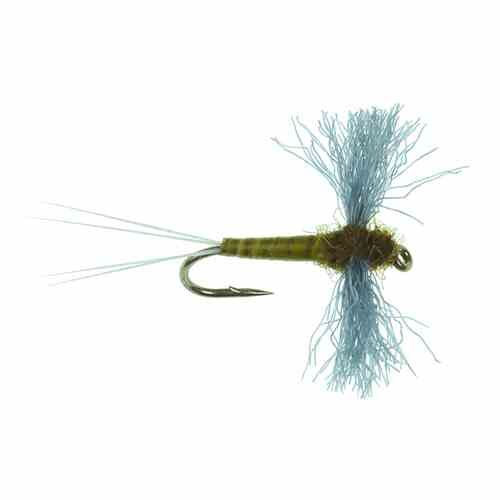 The Polywing Spinner, BWO, picture.
