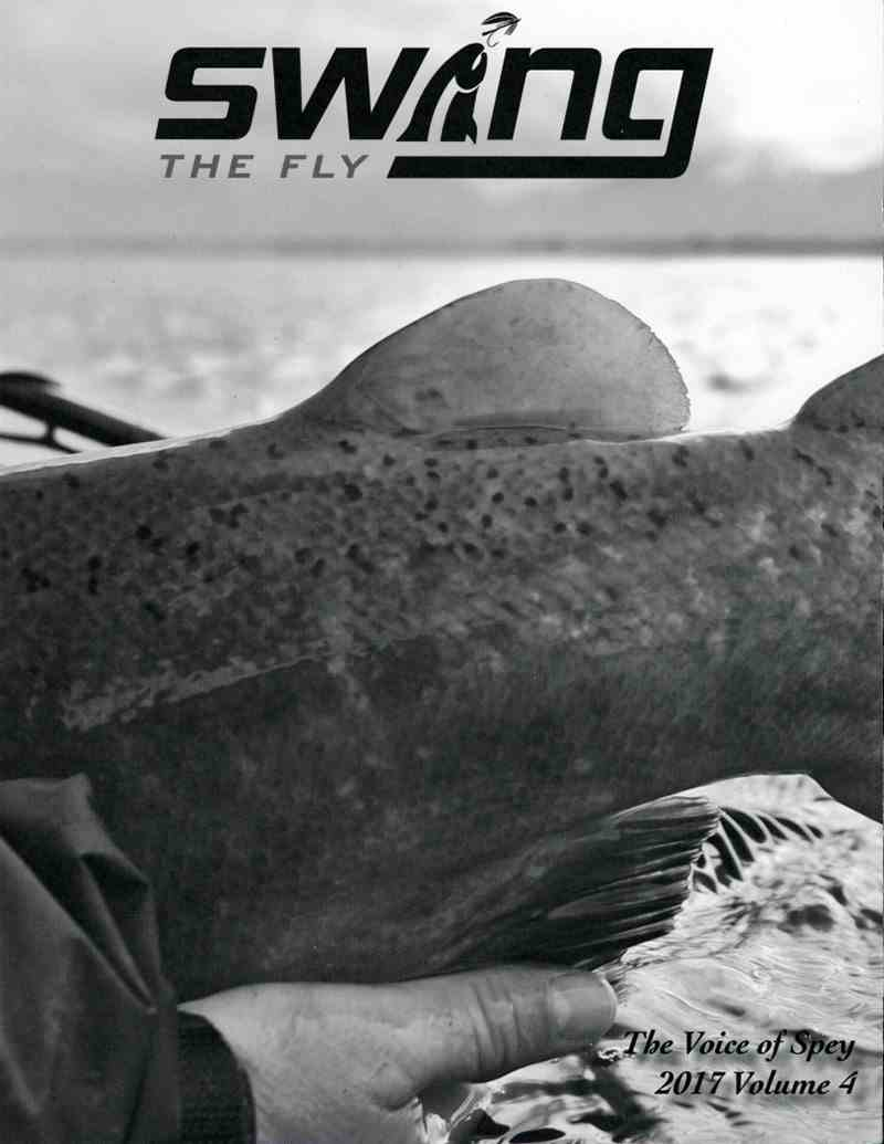 Swing The Fly Magazine 2017 volume 4, picture