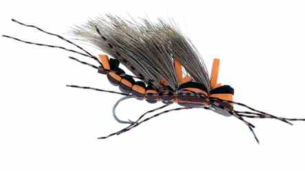 Kyles King Kong Salmonfly, picture