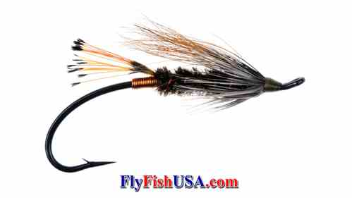 Mark's Prism Steelhead Fly, Picture