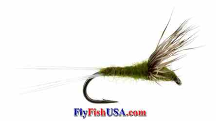 Baetis Comparadun trout fly, picture