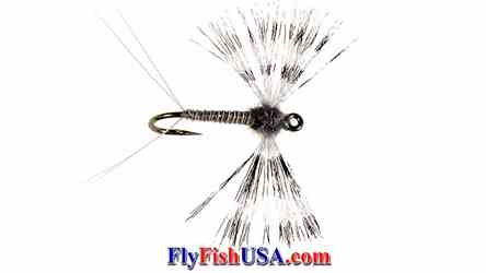Callibaetis Organza Spinner fly, picture
