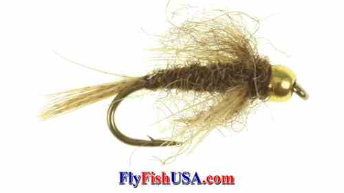 Picture: Bead Head Bird's Nest Fly