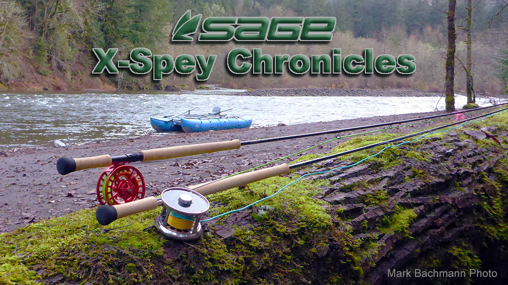 Two Sage X Spey rods are laying on a cottonwood log with the Sandy River in the background.